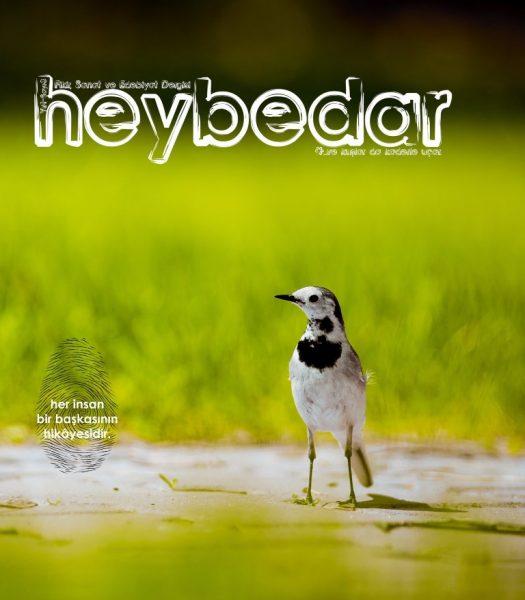 HEYBEDAR